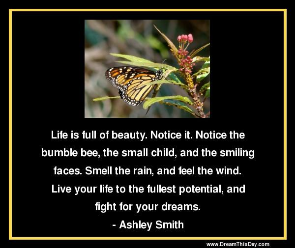 Life is full of beauty. Notice it.  Notice the bumble bee, the small child,  and the smiling faces.  Smell the rain, and feel the wind.  Live your life to the fullest potential,  and fight for your dreams.  - Ashley Smith