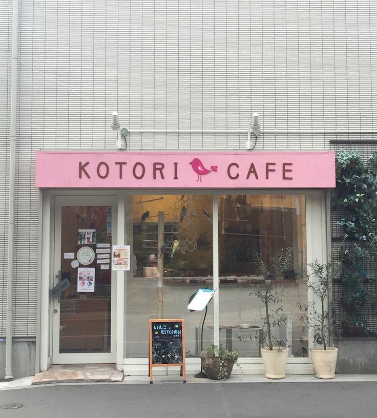 Kotori Vogel Cafe Japan Tokyo - Verrückte Restaurants