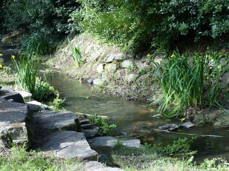 Le ruisseau du Tanchet au château d'Olonne