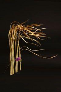 zhanna semenova floral design
