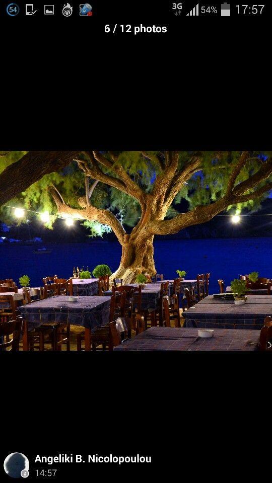 manolis taverna - sifnos - παραδοσιακή ελληνική ταβερνα