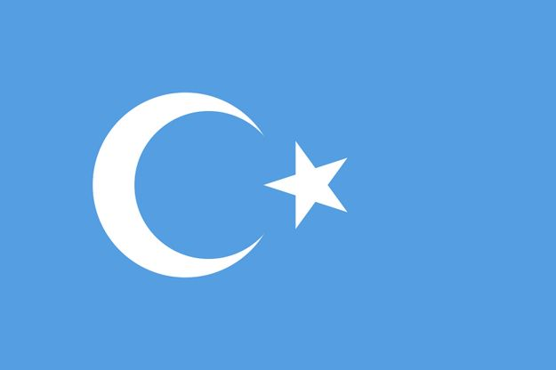 national-flag-of-east-turkestan