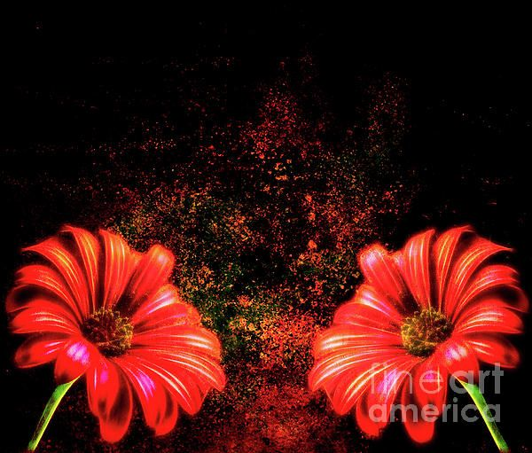 Red Daisy Abstract - Abstract flower pattern by Tracey Everington of Tracey Lee Art Designs. Prints and Merchandise available