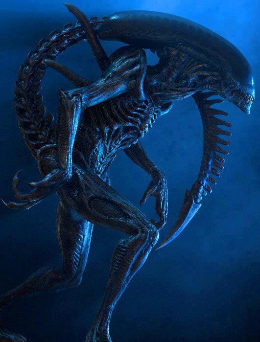 #alien #movies.  Best movie ever!!!!!!! No other alien movie comes close.