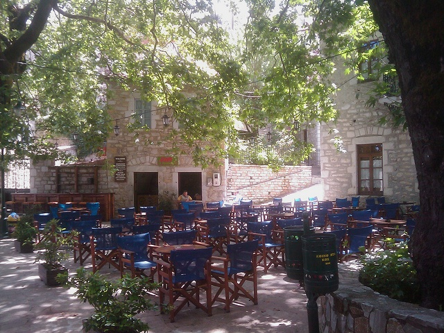 Enjoying traditional coffee and sweets under the huge, old trees at the square of Kosmas village, Arcadia. More at http://www.blogtravels.gr/2012/09/kosmas-arkadias/