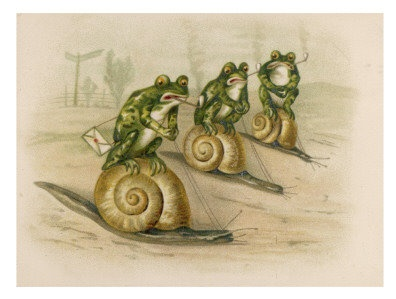 14 Best Snail Children Images On Pinterest Snails Art