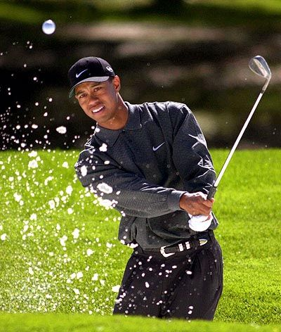 can't wait to try and get a tiger woods golf swing this summer either!