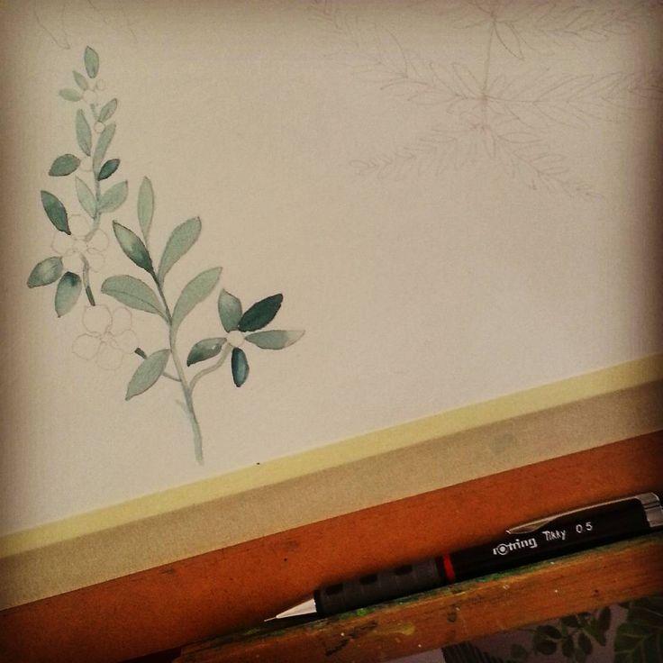 A little section of Manuka #rotring #botanical #wip #watercolor #manuka
