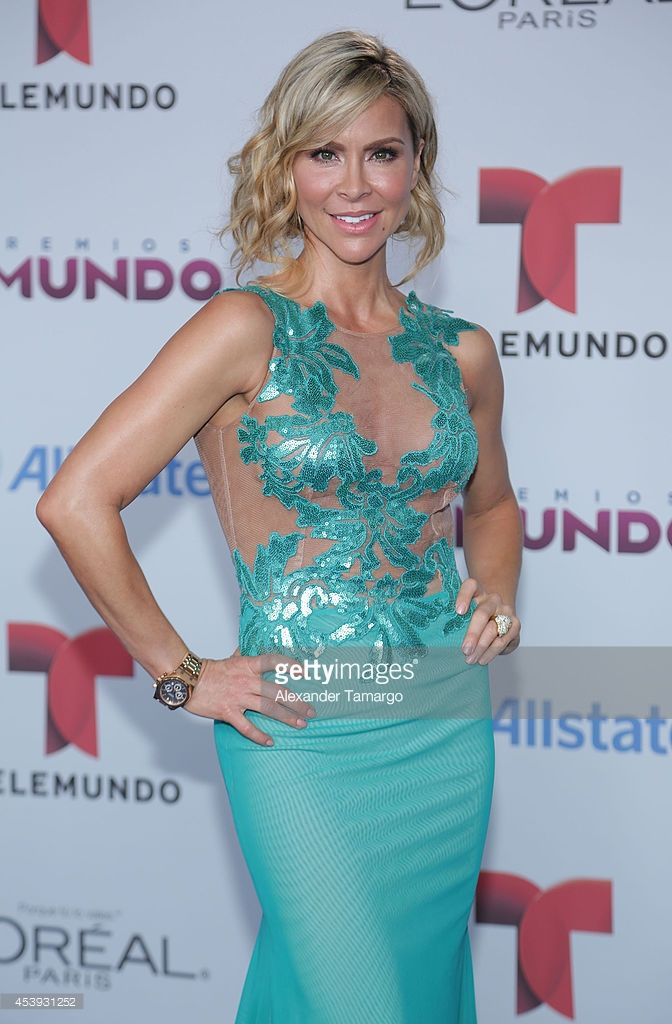 Aylin Mujica arrives at Telemundo's Premios Tu Mundo Awards 2014 at American Airlines Arena on August 21, 2014 in Miami, Florida.