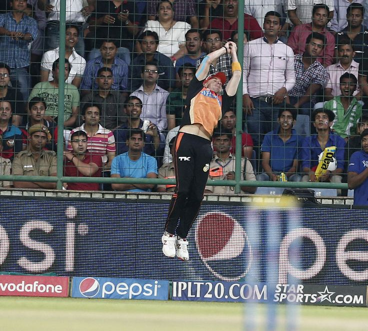 Dale Steyn taking a stunning catch at the boundary to dismiss Dinesh Karthik.