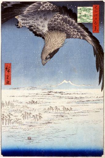 のぞいてびっくり江戸絵画-科学の眼、視覚のふしぎ- 展示構成 サントリー美術館