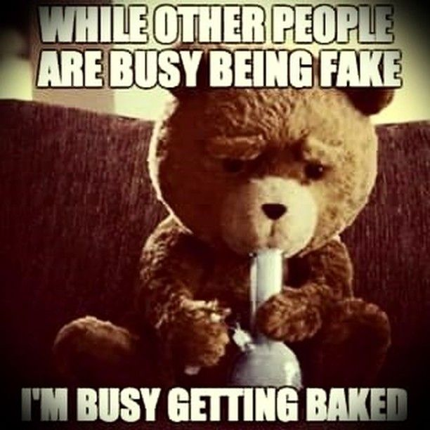 #baked #weed #stoners #haters #420 #w420 forget the rest and work on yourself!