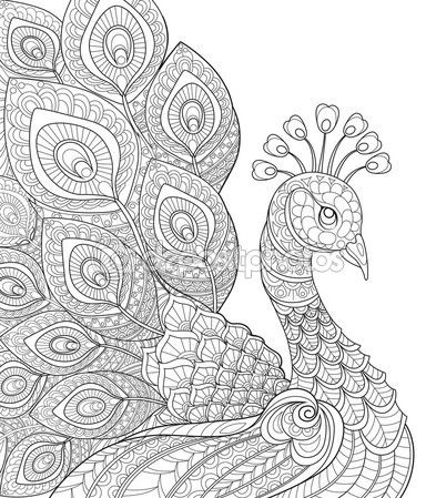 Pavo real. Página para colorear antiestrés adultos — Ilustración de stock #91279542                                                                                                                                                                                 Más