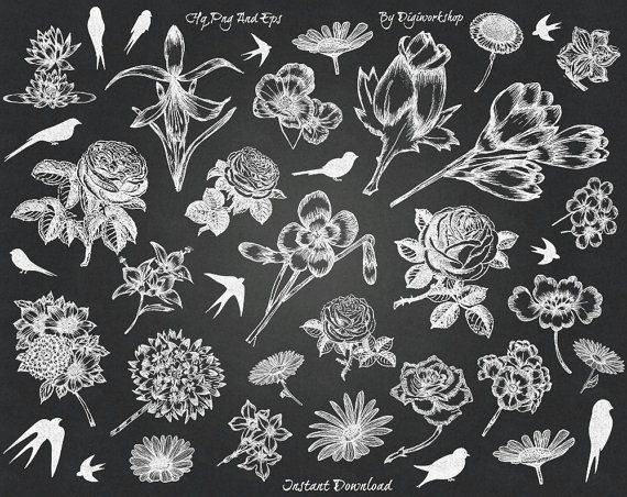 #Chalkboard Flower Clip Art #Clipart with chalkboard images of #flowers, bird + 2 black & green chalkboard background  This chalkboard clip art contains 36 different flowers a... #etsy #digiworkshop #scrapbooking #illustration #creative #printables #cardmaking #floral