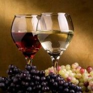 Degustazione guidata Vini Bresciano DOP con ONAV Brescia