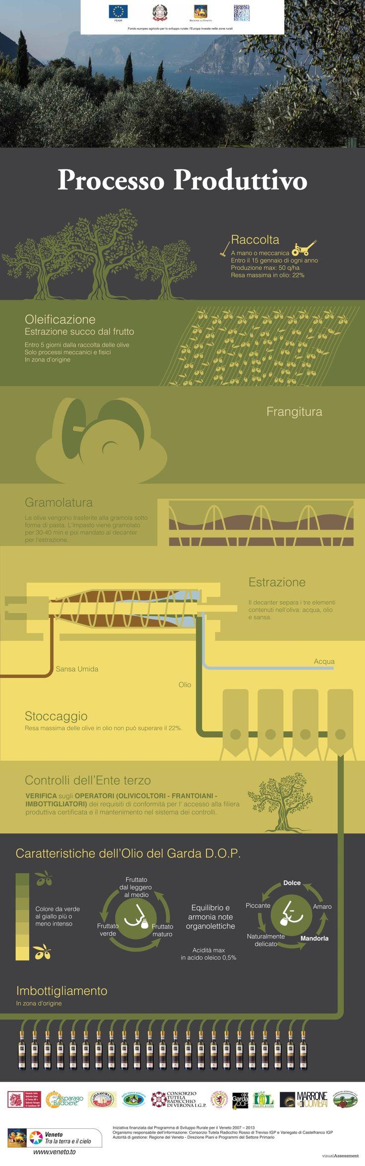 olio garda infografica 4