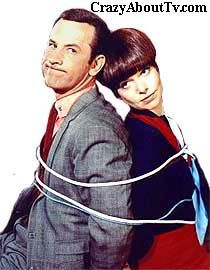 Get Smart TV Show  Don Adams .......Maxwell Smart (Agent 86)  Barbara Feldon ....... Agent 99