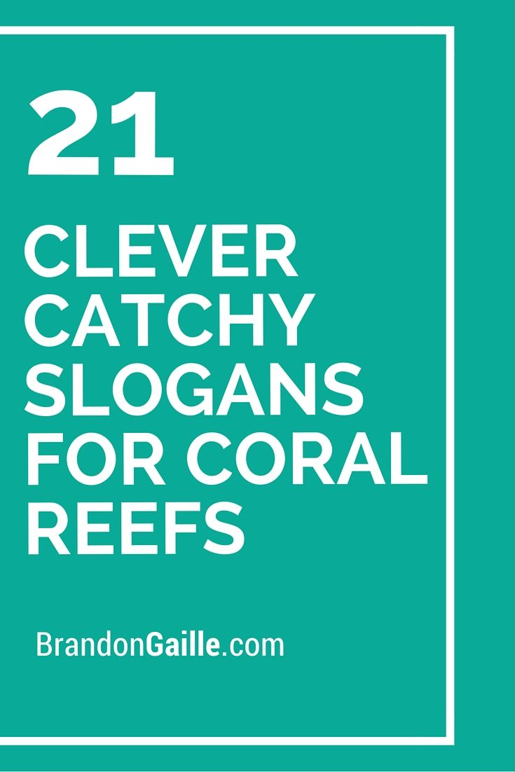 21 Clever Catchy Slogans for Coral Reefs | Coral reefs ...
