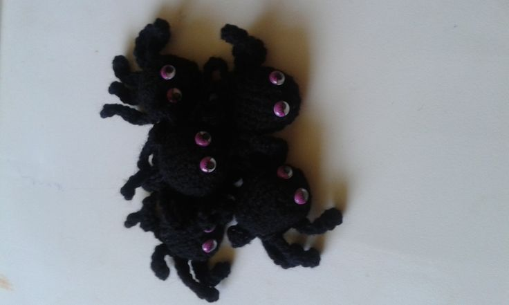 Family of spiders ready to go to their new home. Remember these guys are only £2 each.