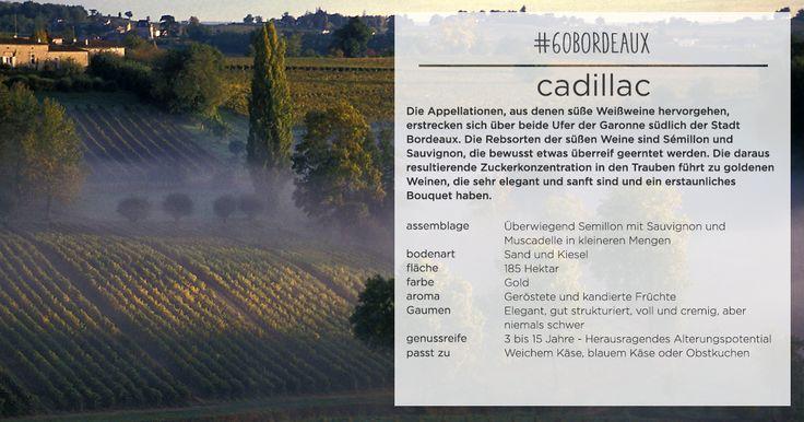 Das Cadillac – eine reine Süßwein-Appellation #AOC #Cadillac #Appellation #Bordeaux #Wein #Süßwein #intensiv #fruchtig