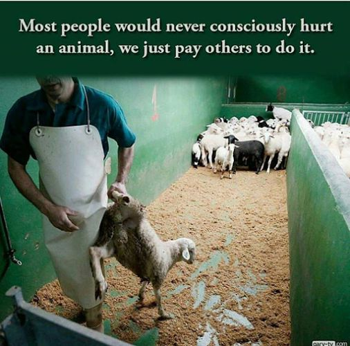 """These people do not qualify as """"humans"""". ~Beth"""