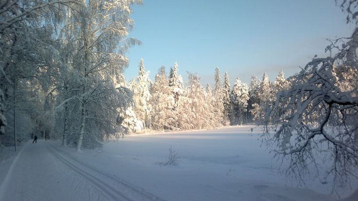 Joutsenlampi, Aulanko, Hämeenlinna