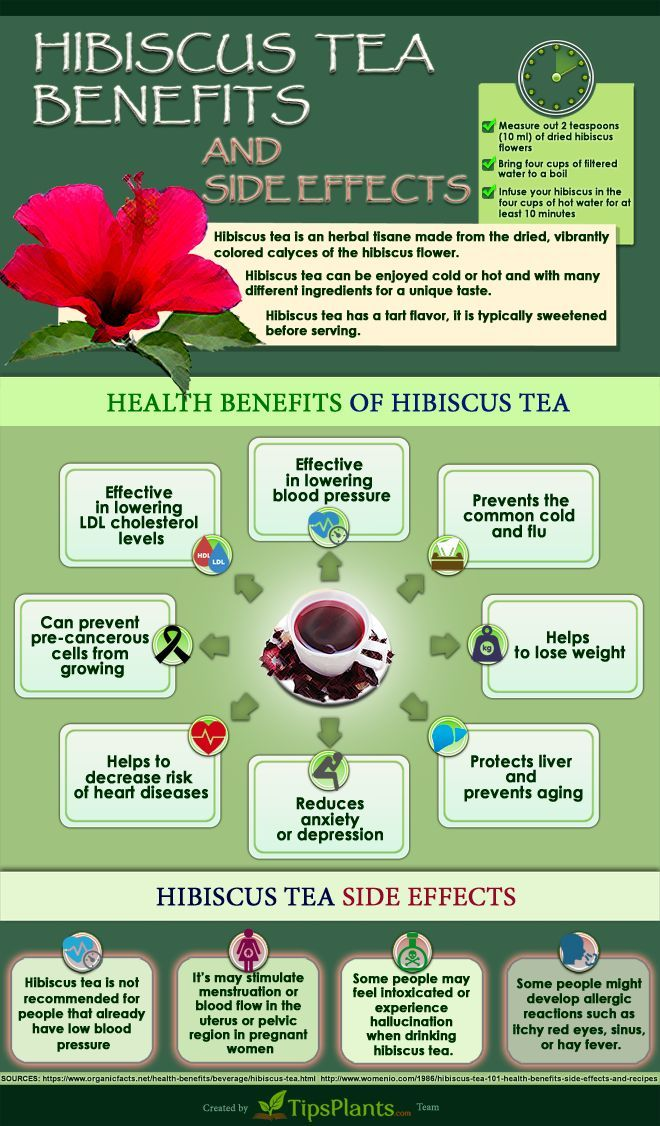 Easy Way To Know About Hibiscus Tea Benefits Infographic At Least