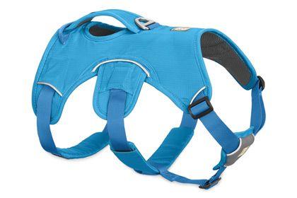 Web Master™ Harness   Supportive, Multi-Use Harness   Ruffwear