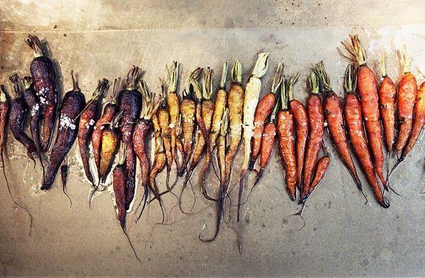 carrots.jpg 600×393 pixels
