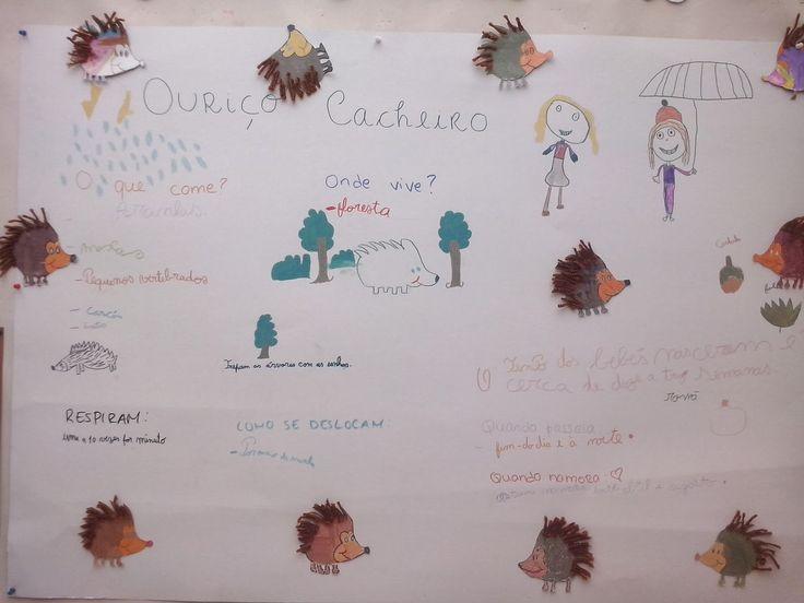 EB1 - Anselmo de Oliveira: Projeto Ouriço-cacheiro