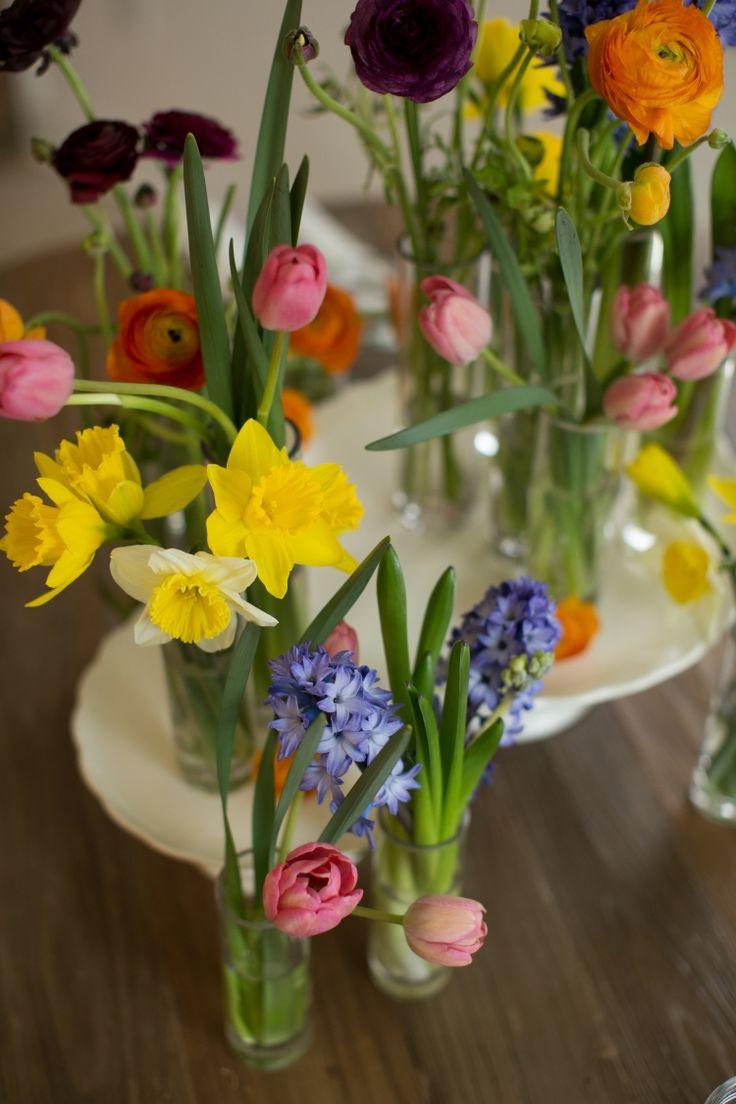 Frühlingsblumen in Glasvasen gruppiert