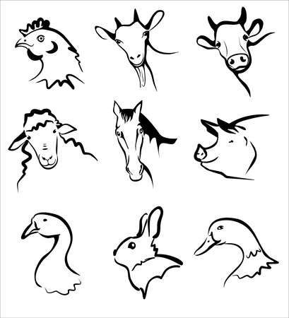123rf Millions Of Creative Stock Photos Vectors Videos And Music Files For Your Inspiration And Projects In 2021 Animal Drawings Baby Animal Nursery Farm Animals
