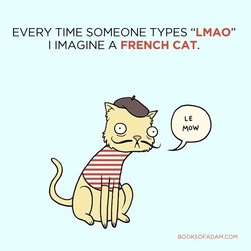 le meow!: Thoughts, Lemow, French Cat, Le Meow, Funny Stuff, Le Mow, Frenchcat, Lemeow, Funnystuff