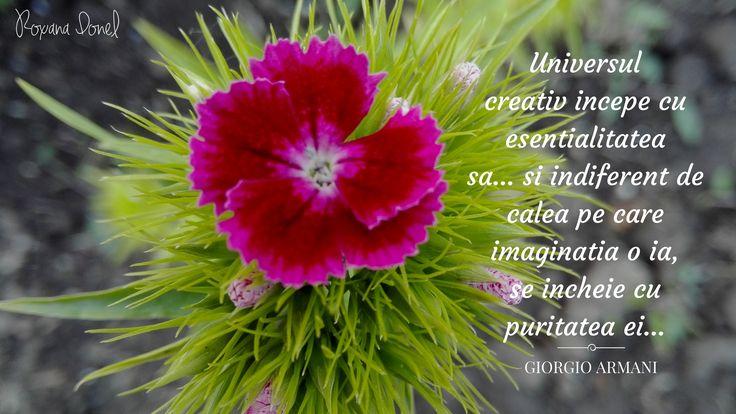 #Creativity #webdesign http://exporeduceri.ro/