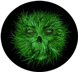 http://www.stafftraining.co.za/blog/how-to-fight-the-green-monster-we-know-as-jealousy