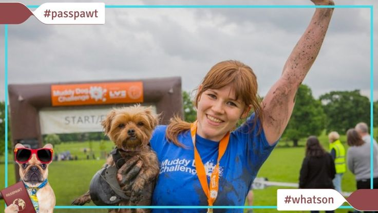 Whats On In Dogland  News  Muddy Dog Challenge 2017  05/16/2017  Muddy Dog Challenge 2017  Windsor by Battersea Dogs & Cats Home MAY 20th  Whether youre a fitness fanatic or just looking for a new challenge were welcoming all dog lovers and their canine chums to take part in the Muddy Dog Challenge and raise sponsorship to help the dogs and cats at Battersea. This is the UKs first obstacle course where animal lovers can compete in 2.5km and 5km runs with their pets. You can enter in a team…