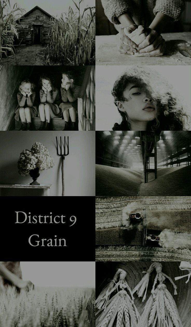 The Hunger Games Aesthetics: District 9