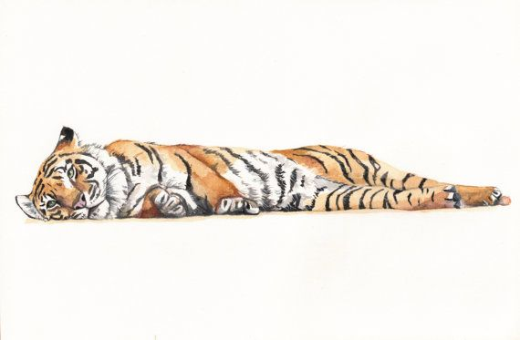 Tiger Painting T071 print of watercolor painting  by Splodgepodge, $15.00