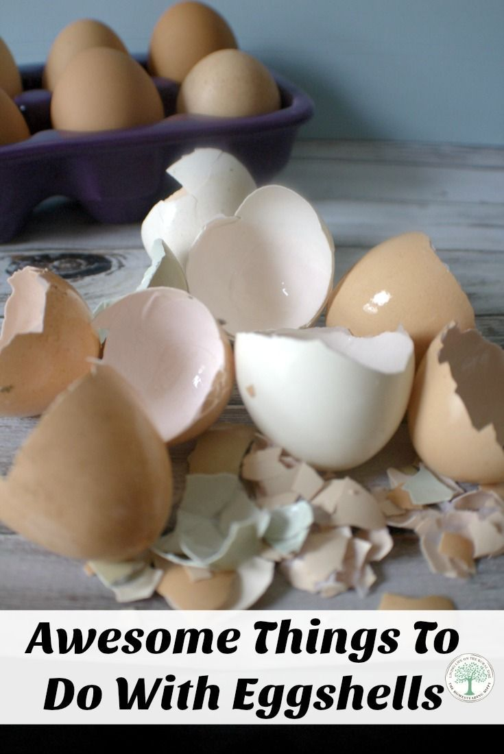 Learn 10 great ways to reuse your eggshells! From compost to candles, we have the idea for you! The Homesteading Hippy via @homesteadhippy