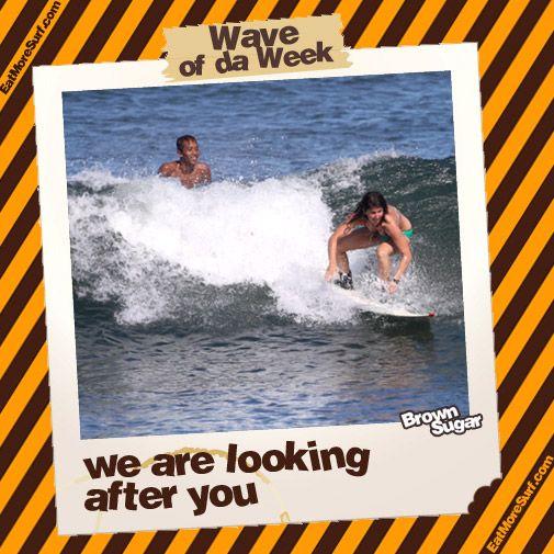 Brown Sugar Surfcamp Bali - News