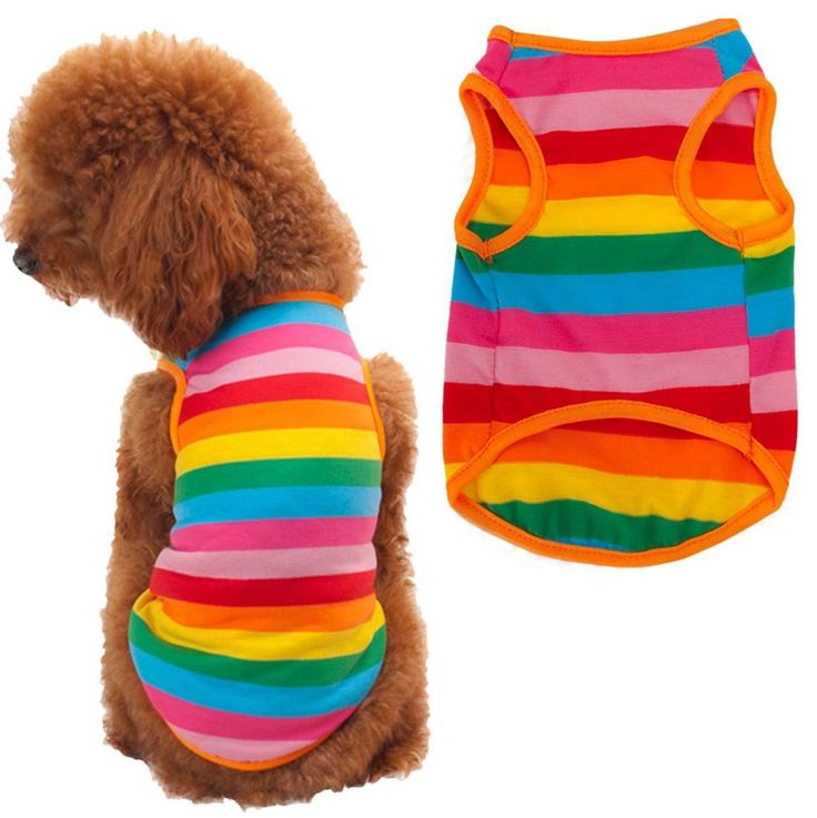 Puppy Shirt, HP95(TM) Summer Rainbow Stripe Pet Shirt Dog Cat Costume Clothing >>> Want to know more, visit the site now : Dog Apparel and Accessories