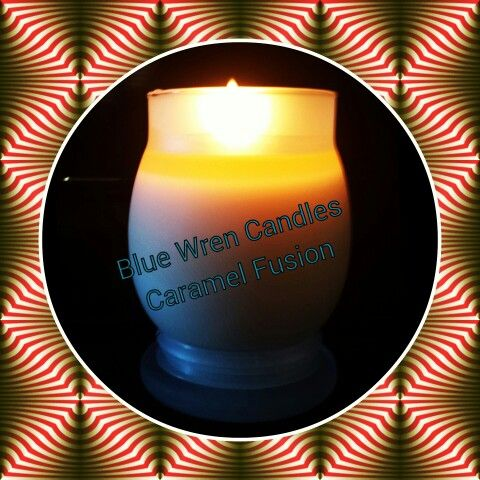 Large Luxe Candalina Soy Fragrant Candle $24.50
