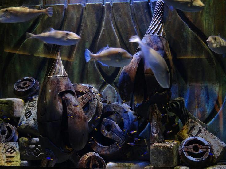 Lost Chambers Aquarium, Atlantis, Dubai