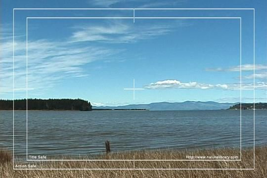 Royalty Free Stock Footage: New Zealand: NL00567