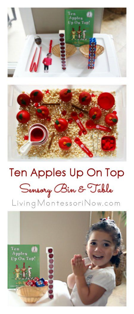 This Ten Apples Up On Top sensory bin and table has many fun Montessori-inspired activities for preschoolers; post includes free printable, video, and Montessori Monday linky collection.