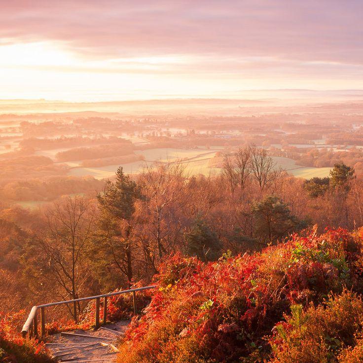 Leith Hill, Surrey, England
