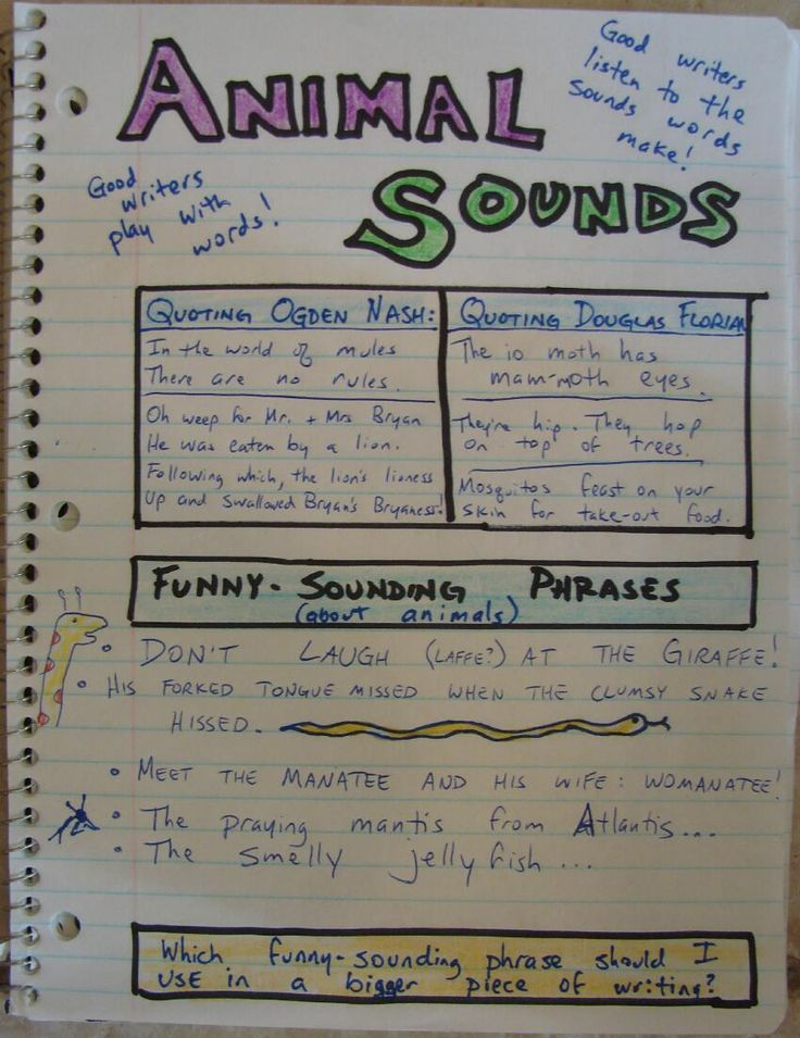 34 best writing journal images on pinterest notebooks teaching handwriting and teaching writing. Black Bedroom Furniture Sets. Home Design Ideas