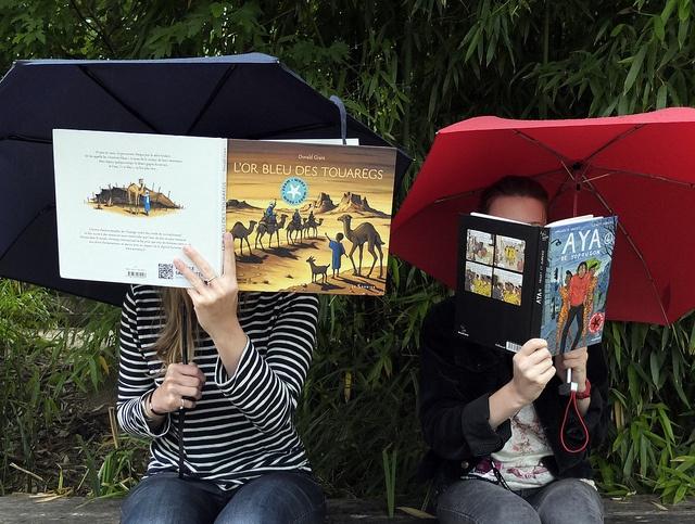 Salon dété, livres nomades, via Flickr.