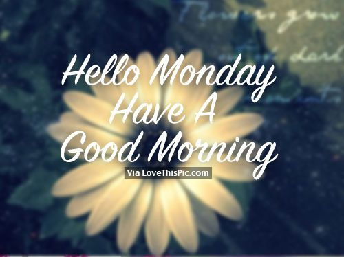 Hello Monday, Have A Good Morning monday good morning monday quotes good morning quotes happy monday good morning monday quotes monday morning facebook quotes monday image quotes happy monday morning happy monday good morning