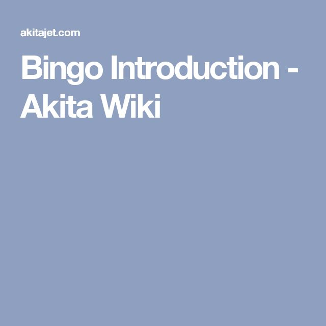 Bingo Introduction - Akita Wiki